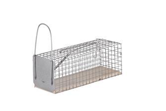 Käfigfalle für Ratten 1 Fallklappe