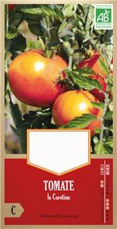 Tomatensamen Carotina