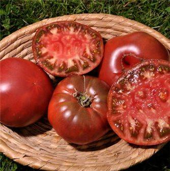 Graines de tomate noire russe